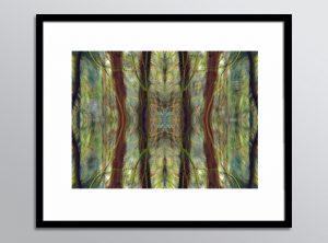 RefN 04 framed