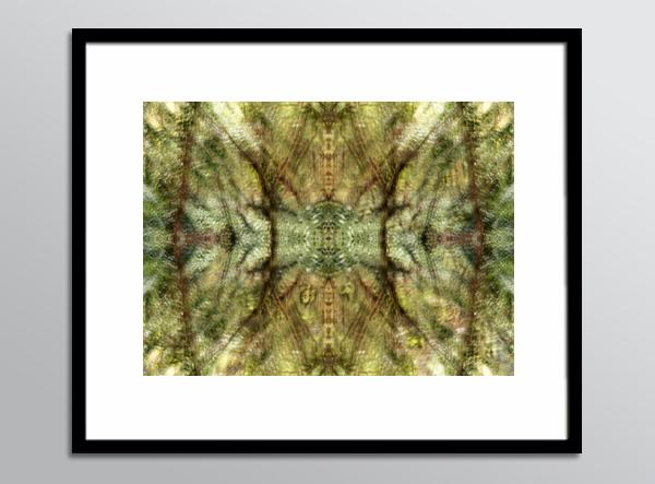 RefN 06 framed