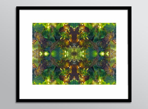 RefN 08 framed