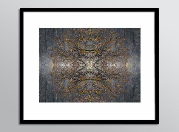 RefN 11 framed