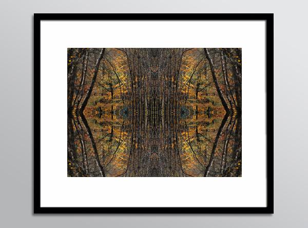 RefN 13 framed